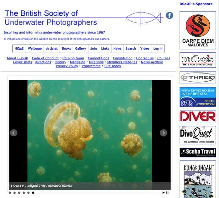 British Society of Underwater Photographers