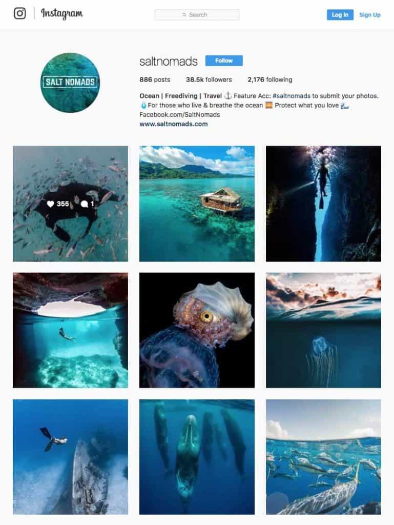 Underwater Photography Insta Saltynomads