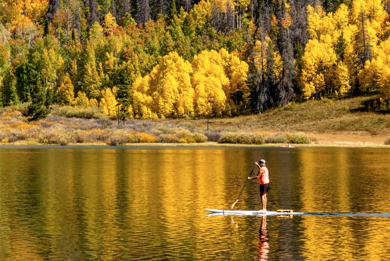 Connect with Nature SUP