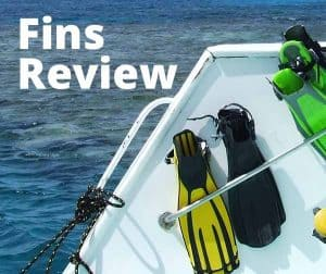 Fins Review